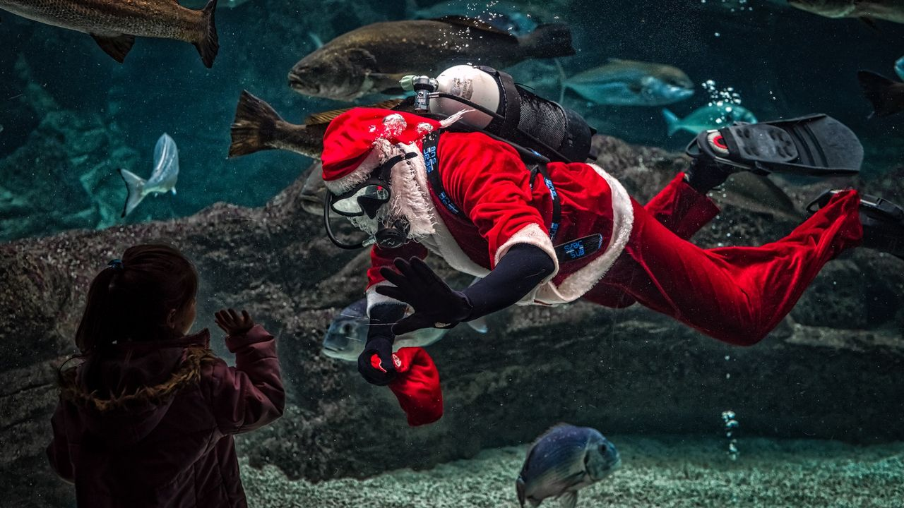 Free Images Of Santa Claus