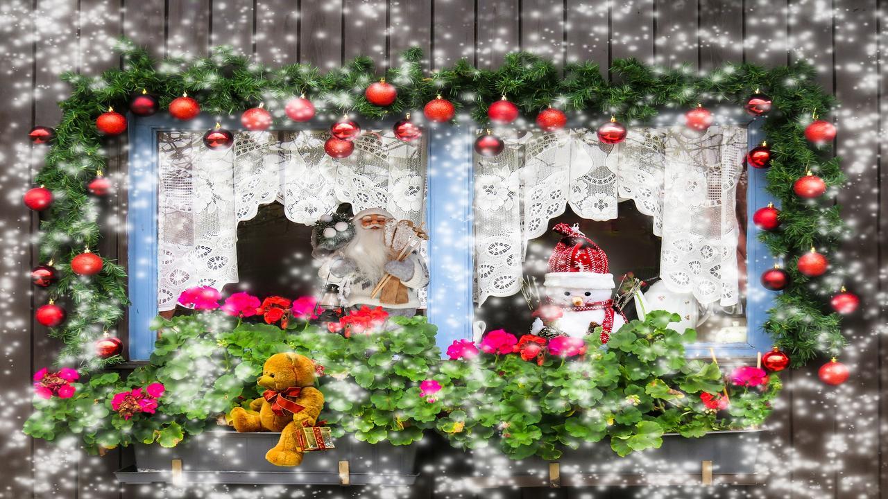Funny Christmas Pics Free