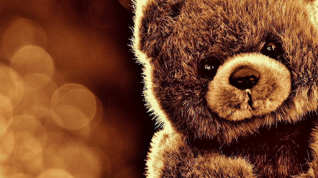 Happy Teddy Day Images With Quotes