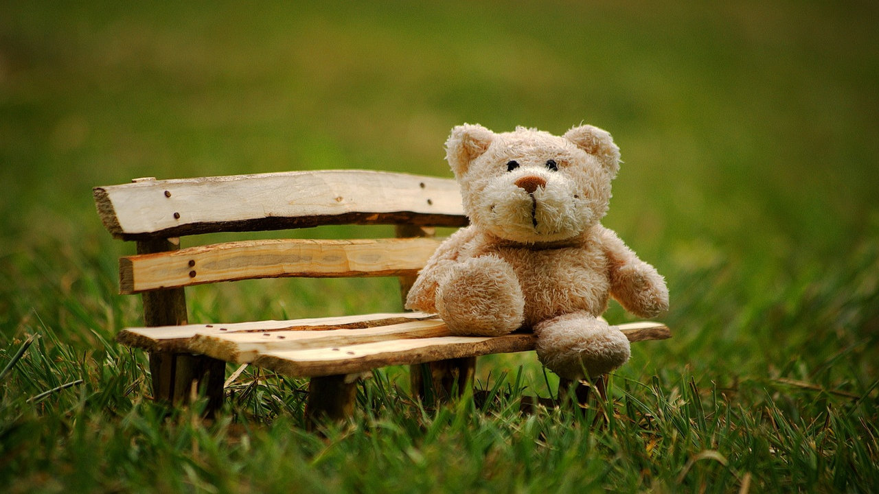 Happy Teddy Day Sms In English
