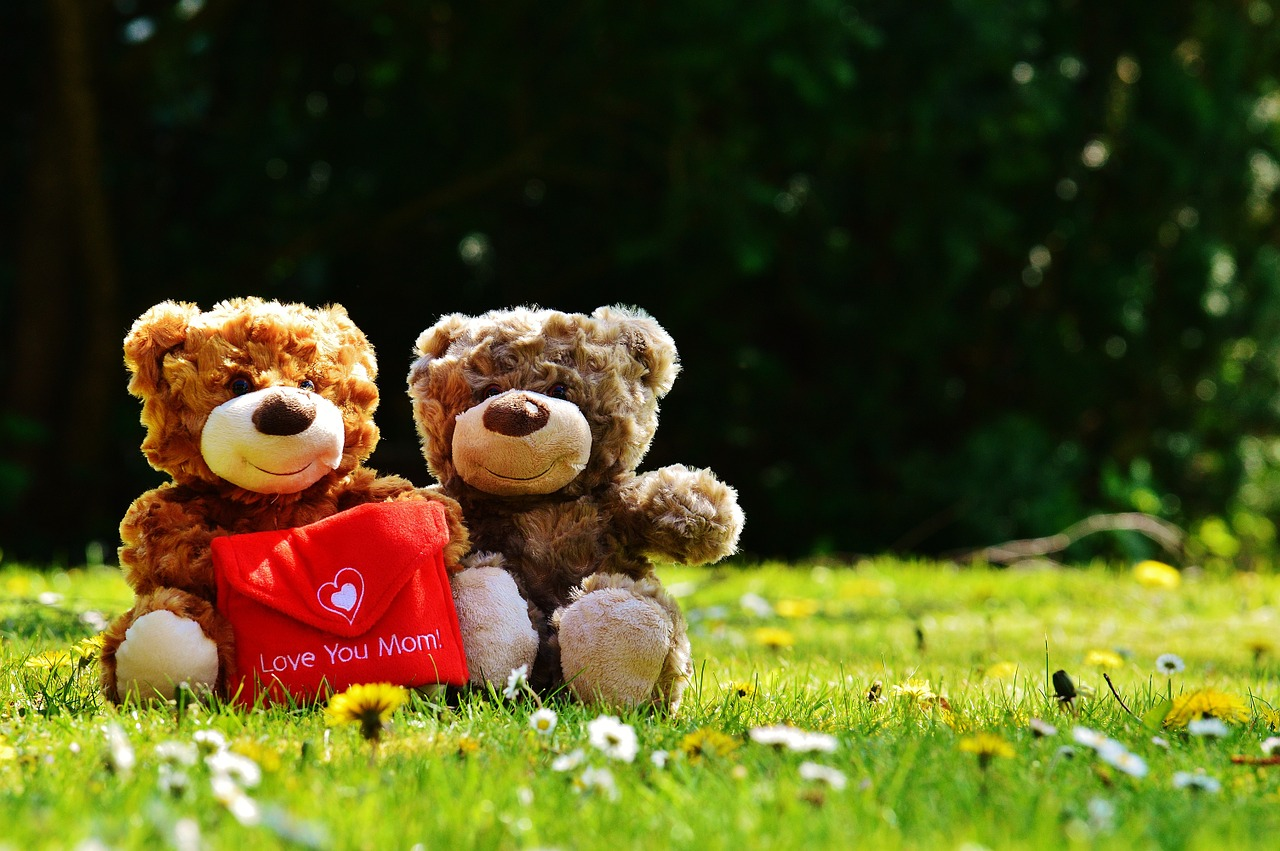 Happy Teddy Day Status