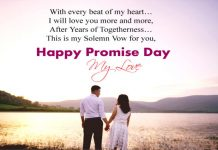 Promise Day Quotes For Boyfriend