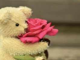 Rose Day Sms 2019