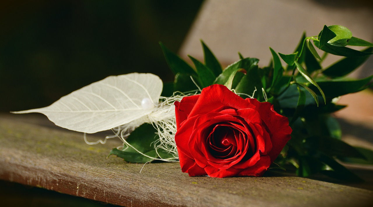 Rose Day Wishes For Friends