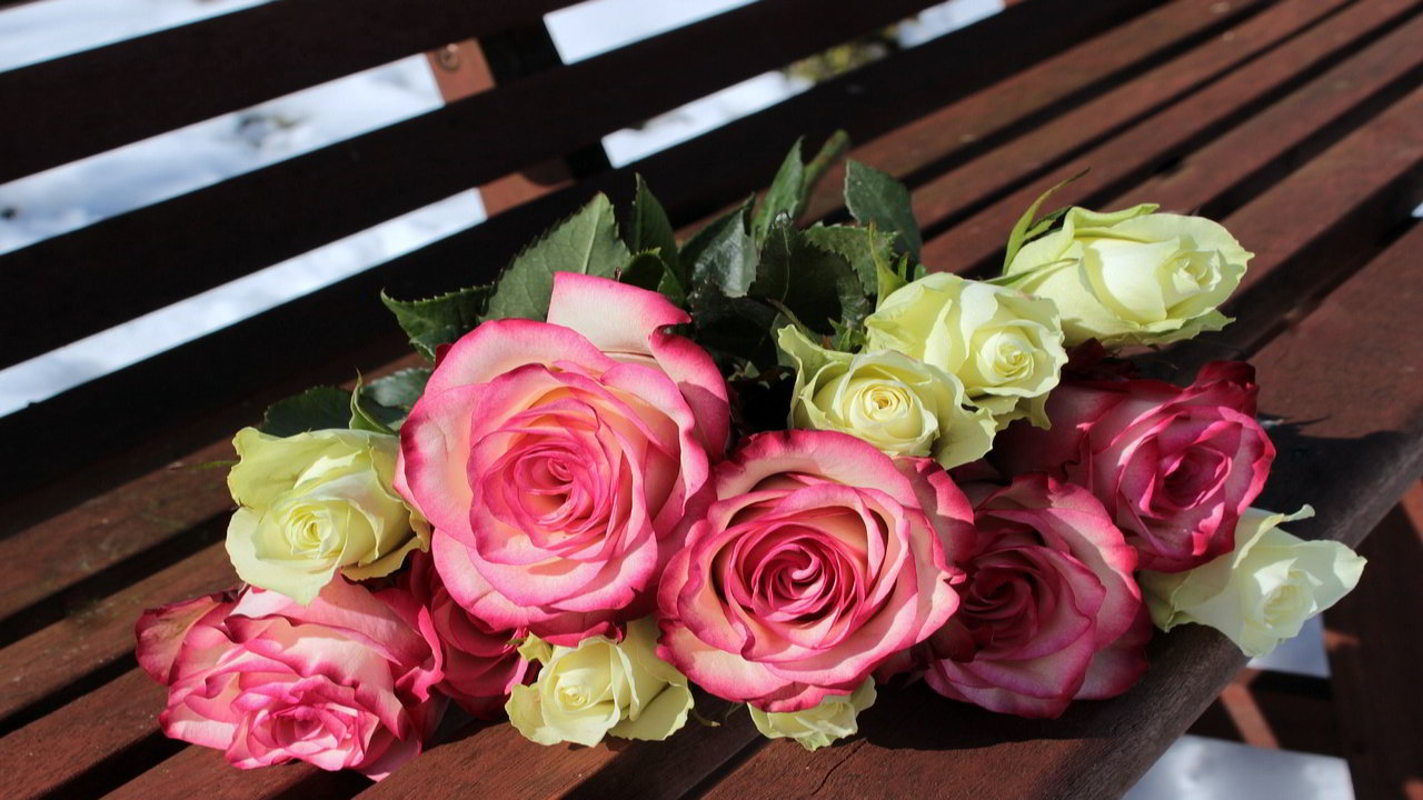 Shayari On Rose Day