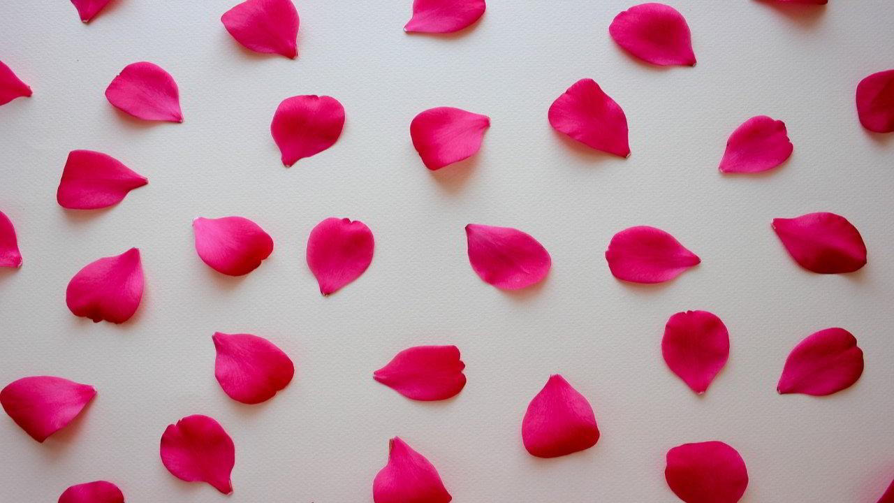 Status On Rose Day