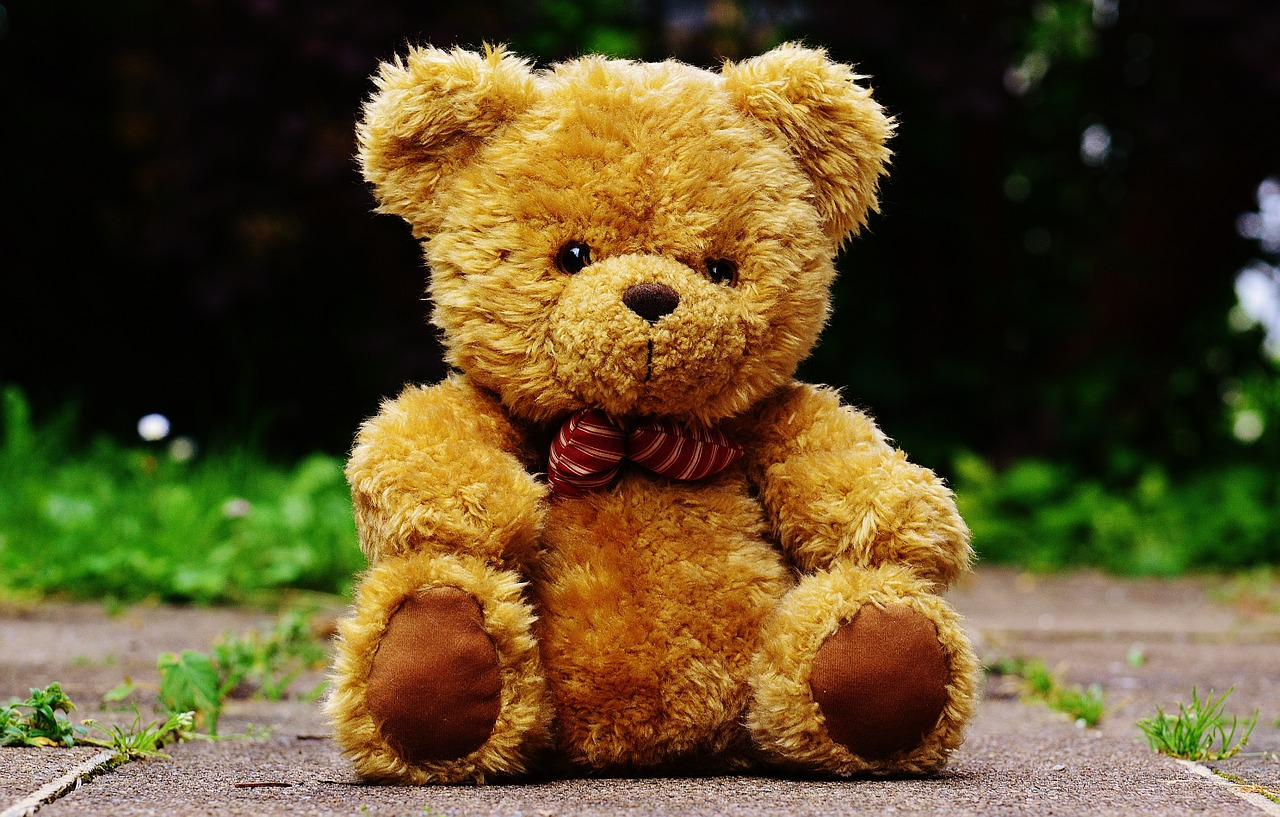 Status On Teddy Day