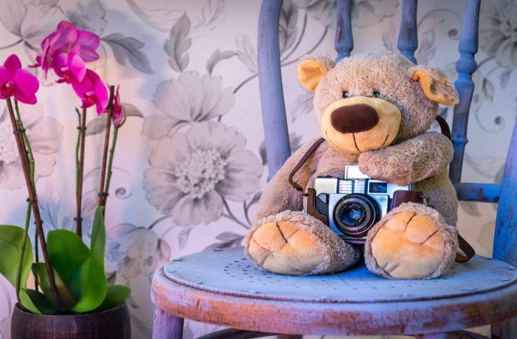 Teddy Bear Day Shayari For Whatsapp