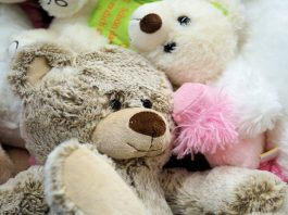 Teddy Day Quotes For Facebook