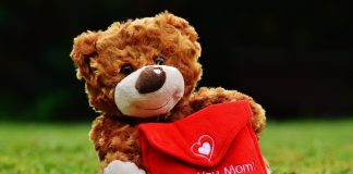 Teddy Day Status For Whatsapp