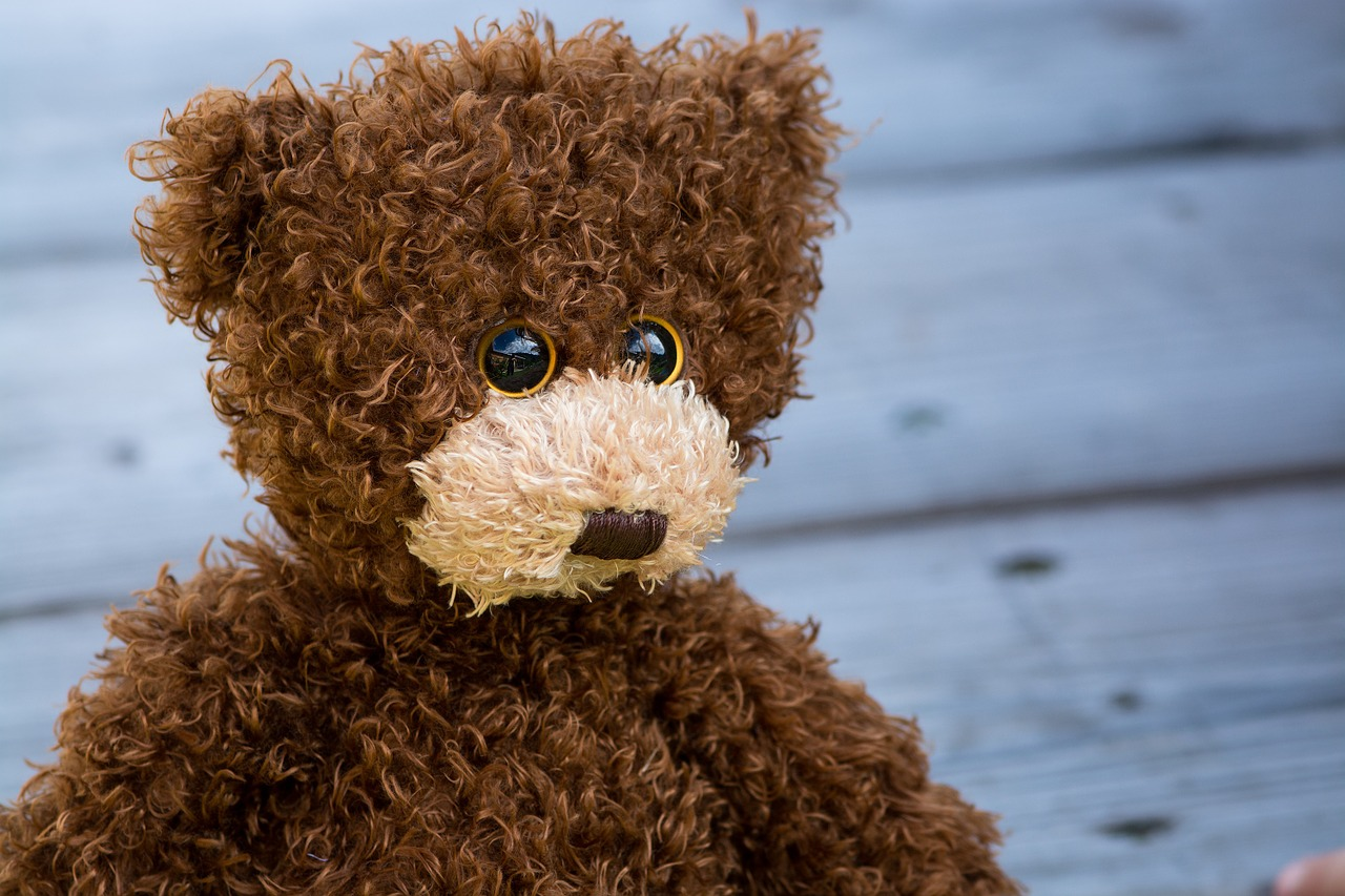 Teddy Status For Girl