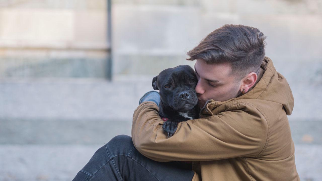 Free Download Hug Day Images