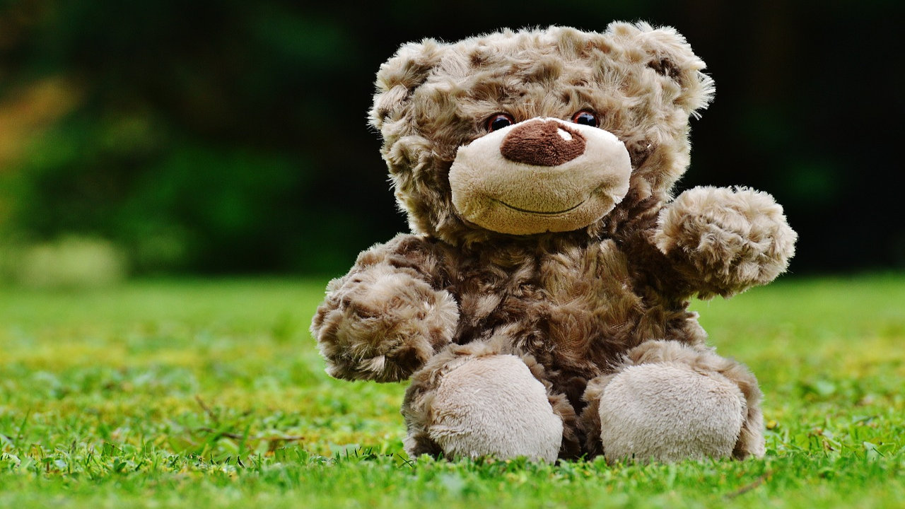 Happy Teddy Bear Day Hd Images