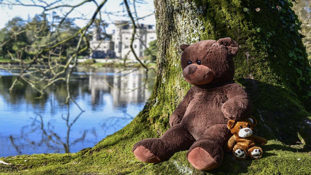 Images For Teddy Bear Day
