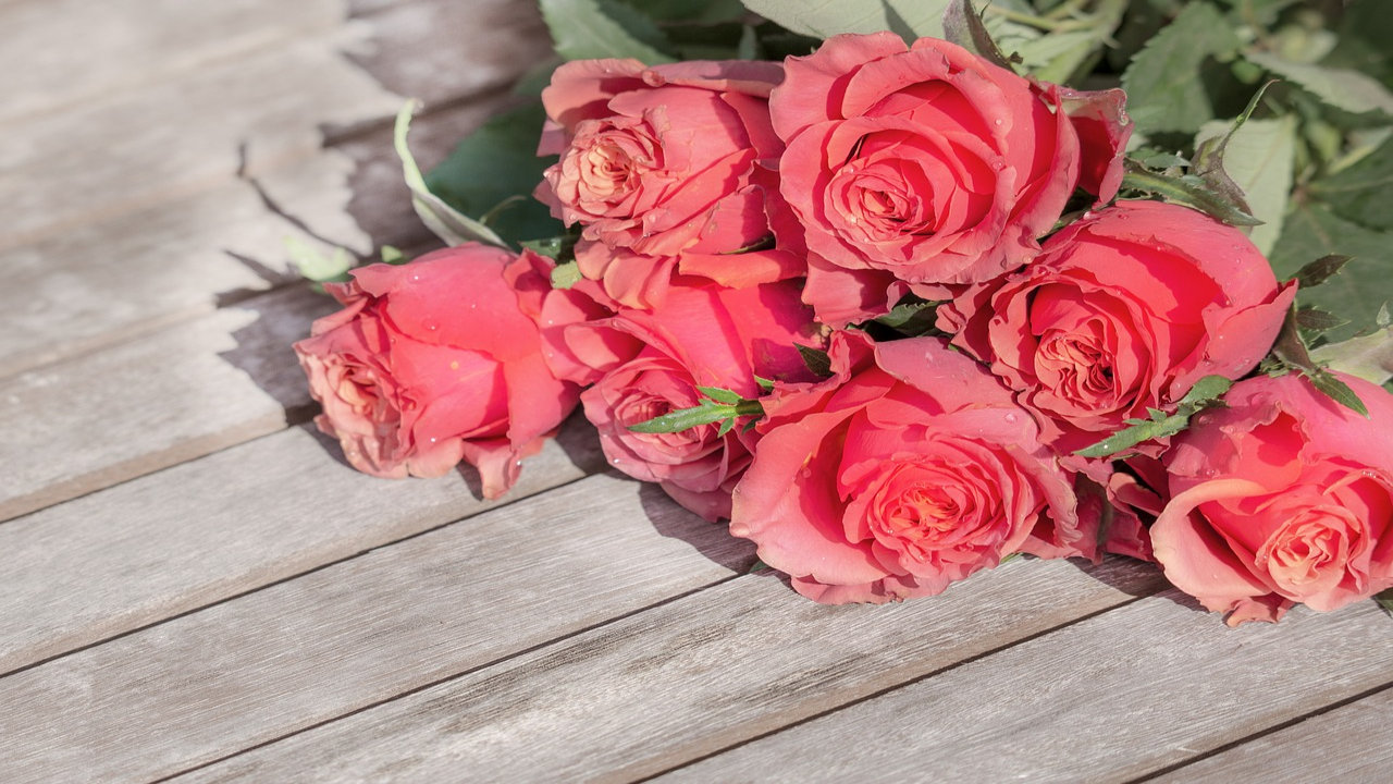 Images Of Roses For Rose Day