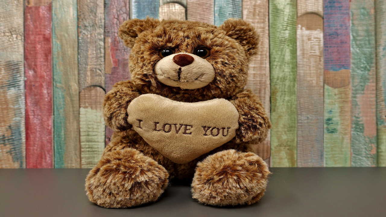 Pics Of Teddy Bear Day