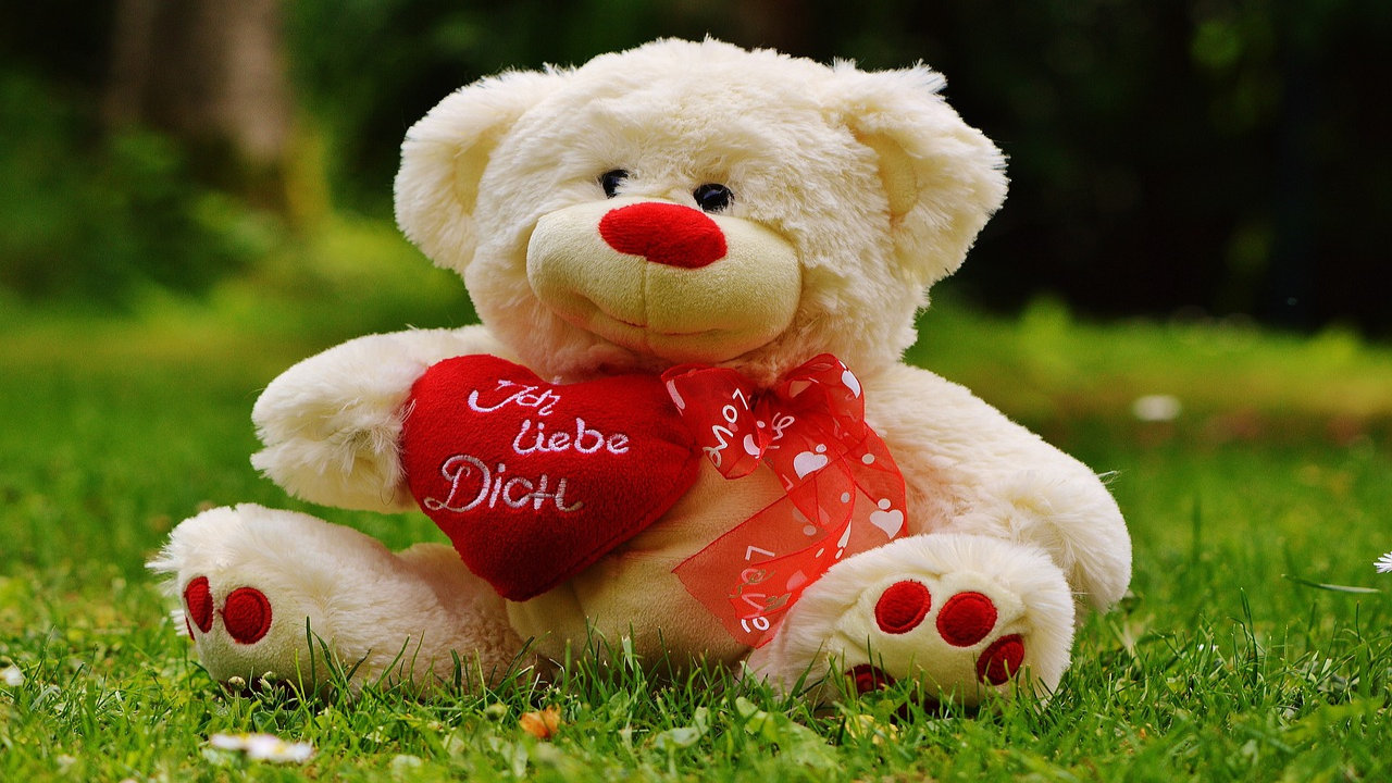 Pictures For Teddy Day