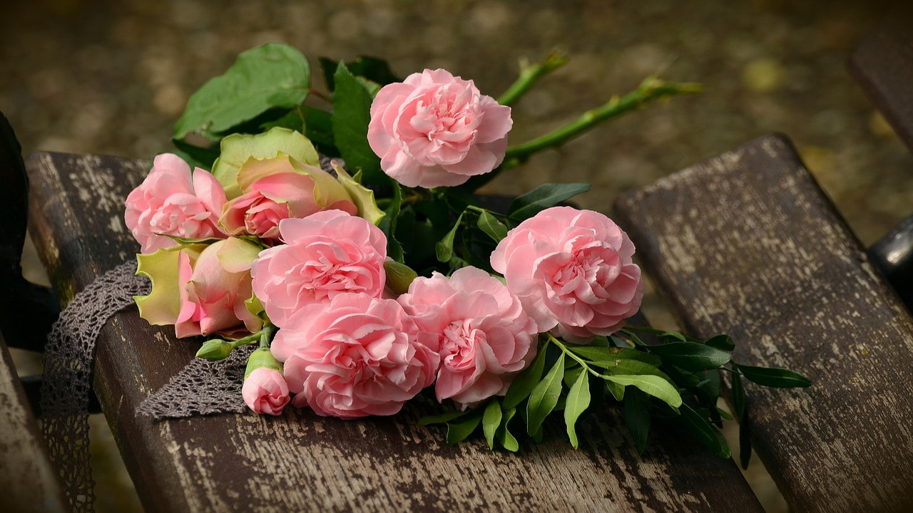 Rose Day Images In Hindi