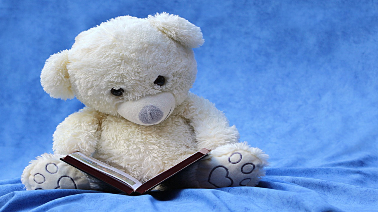 Teddy Day Photos Download