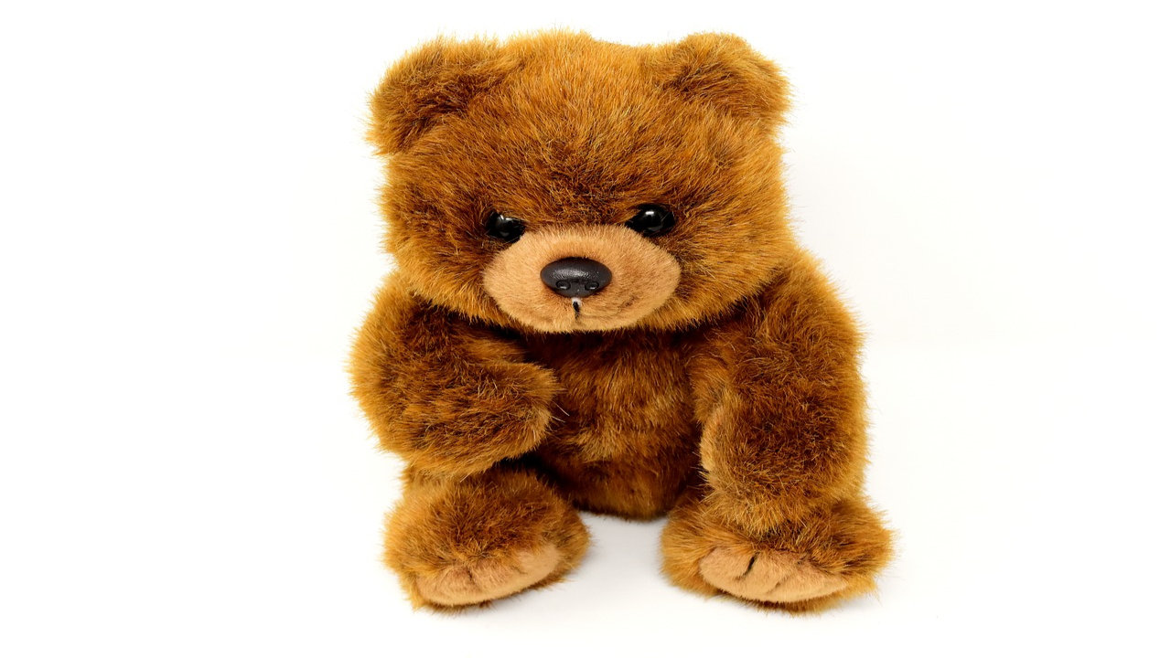 Teddy Day Pictures Download